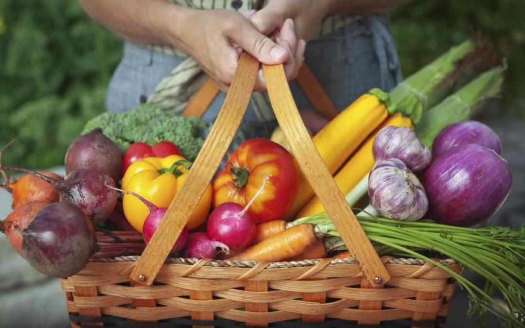 Raw Food Challenge Aftellen T-minus 1 dag: Recepten en shoppen!!
