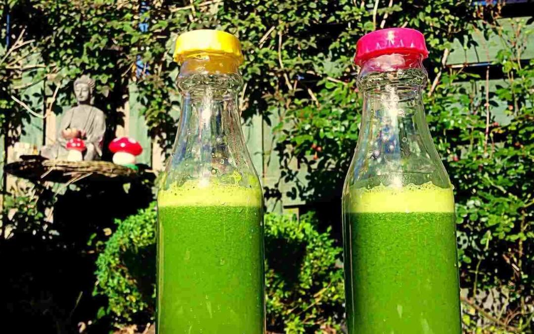 Raw Dag 17: Nooit meer honger tot lunch met groene juice als ontbijt!