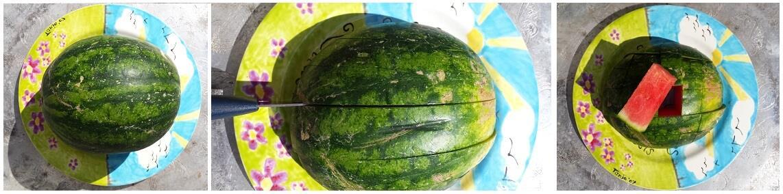 watermeloen 123 75