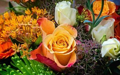 Deel 29: Onverwachte bloemen